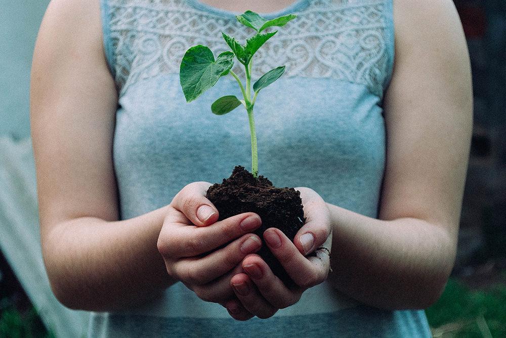 環境保護 エコ